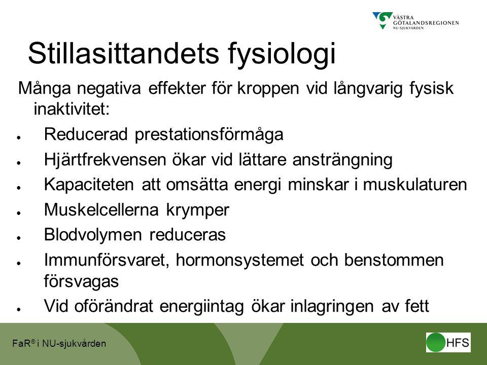 Stillasittandets fysiologi