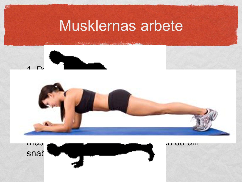Musklernas arbete