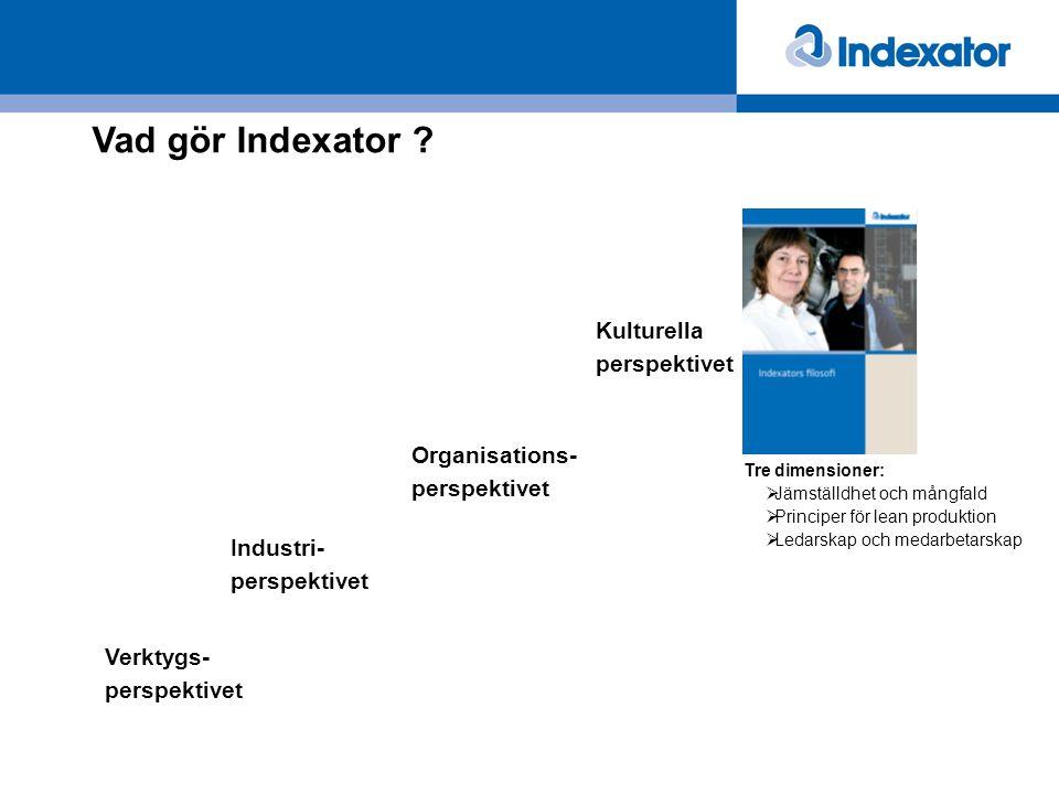 Vad gör Indexator Kulturella perspektivet Organisations-