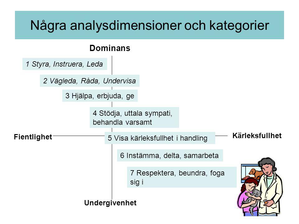 Några analysdimensioner och kategorier