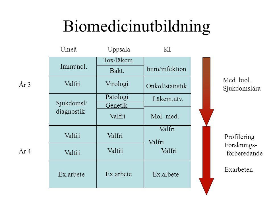 Biomedicinutbildning