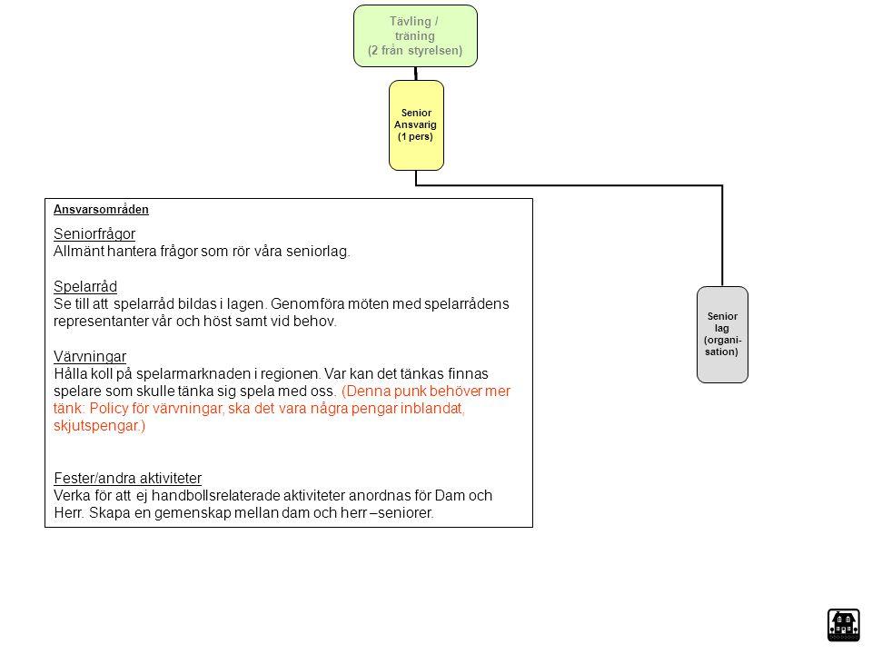 Senior Ansvarig (1 pers) Senior lag (organi- sation)