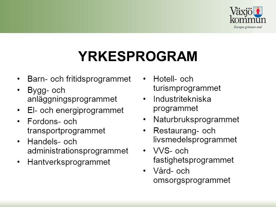 YRKESPROGRAM Barn- och fritidsprogrammet