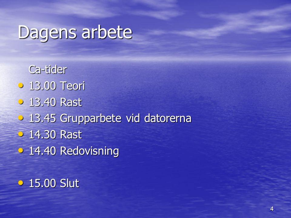 Dagens arbete Ca-tider 13.00 Teori 13.40 Rast