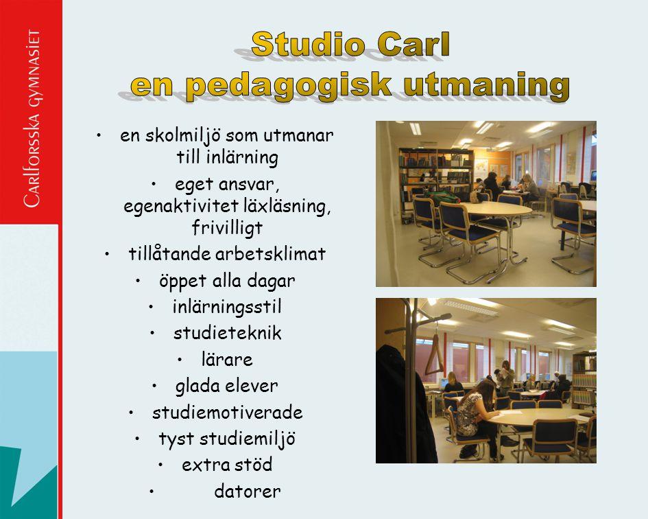 Studio Carl en pedagogisk utmaning