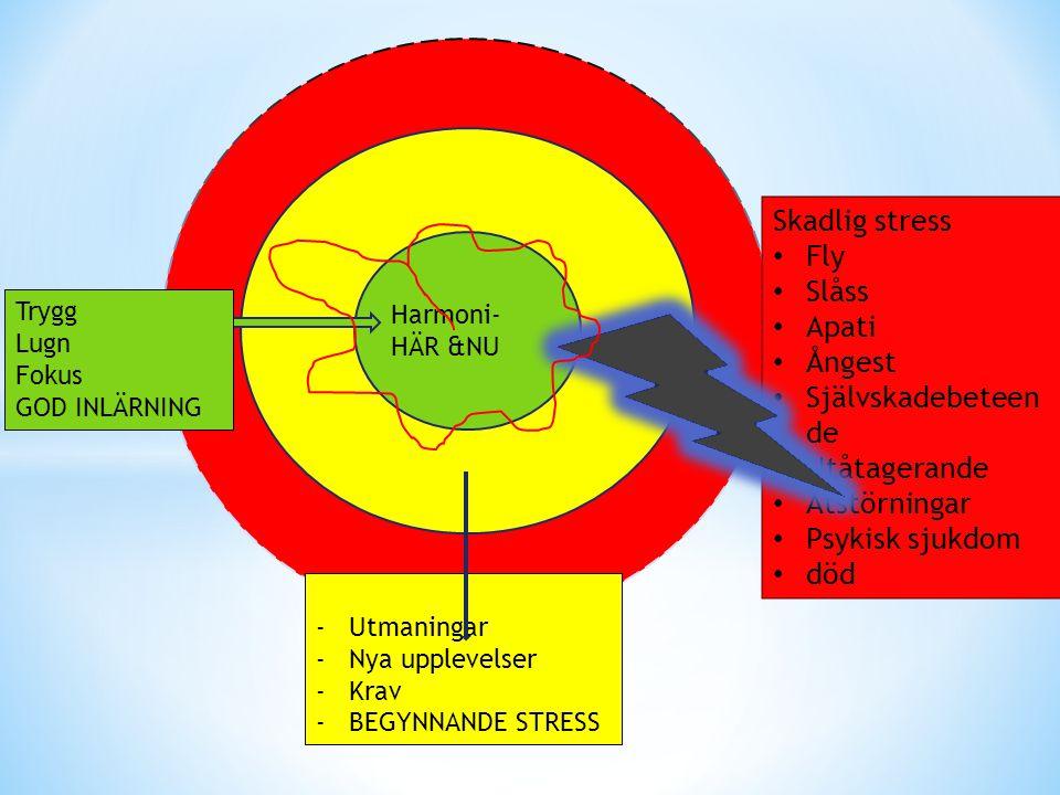Skadlig stress Fly Slåss Apati Ångest Självskadebeteende Utåtagerande