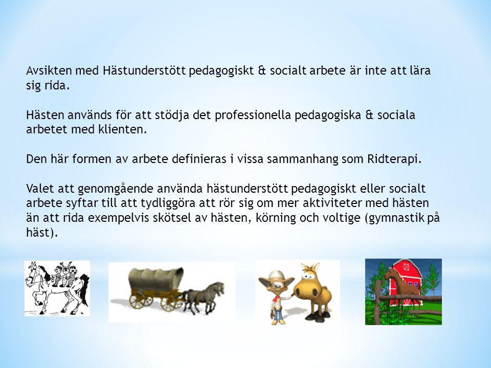 Avsikten med Hästunderstött pedagogiskt & socialt arbete är inte att lära sig rida.