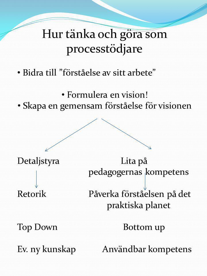Hur tänka och göra som processtödjare