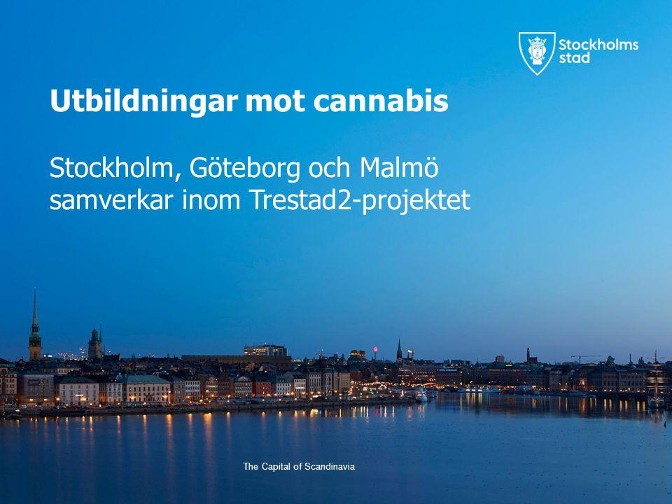 Utbildningar mot cannabis