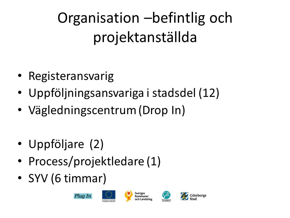 Organisation –befintlig och projektanställda