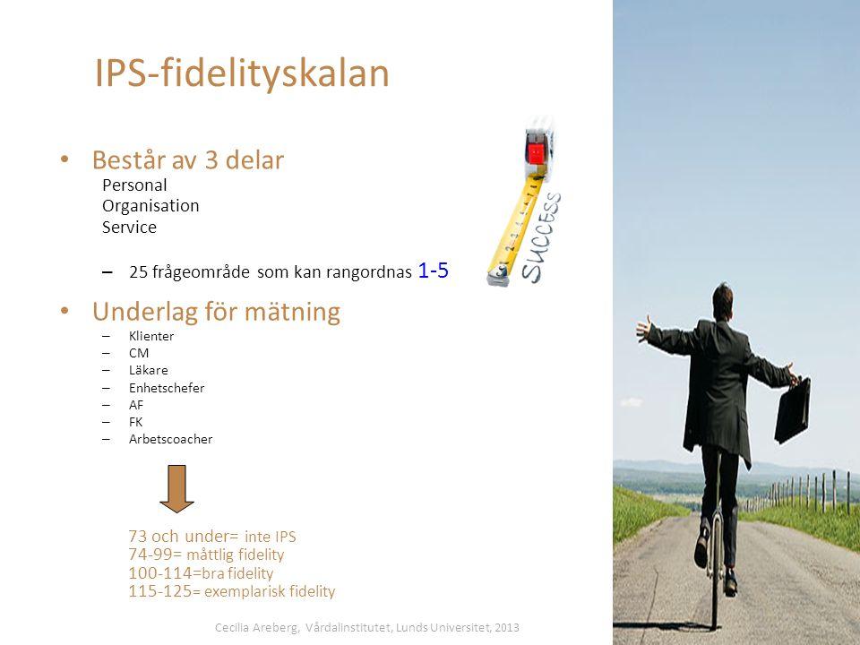 IPS-fidelityskalan Består av 3 delar Underlag för mätning Personal