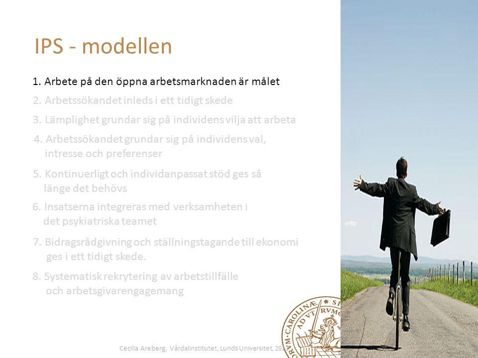 IPS - modellen 1. Arbete på den öppna arbetsmarknaden är målet