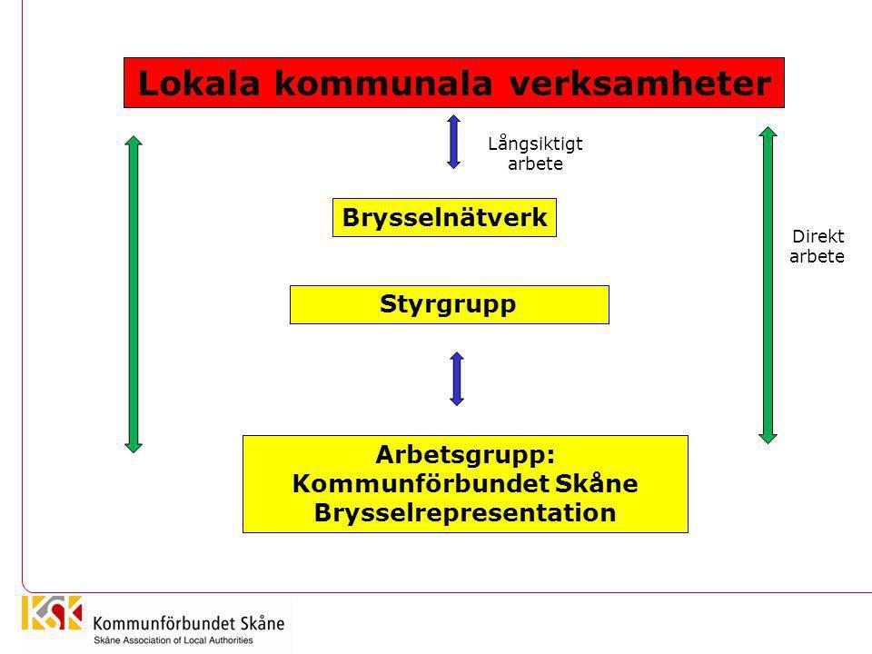 Lokala kommunala verksamheter