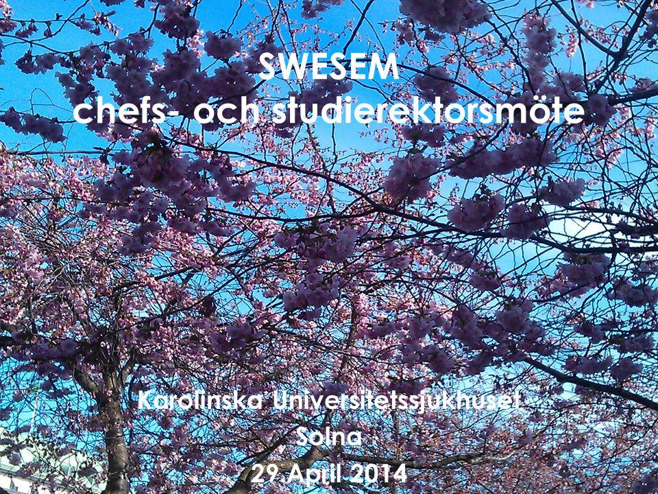 SWESEM chefs- och studierektorsmöte