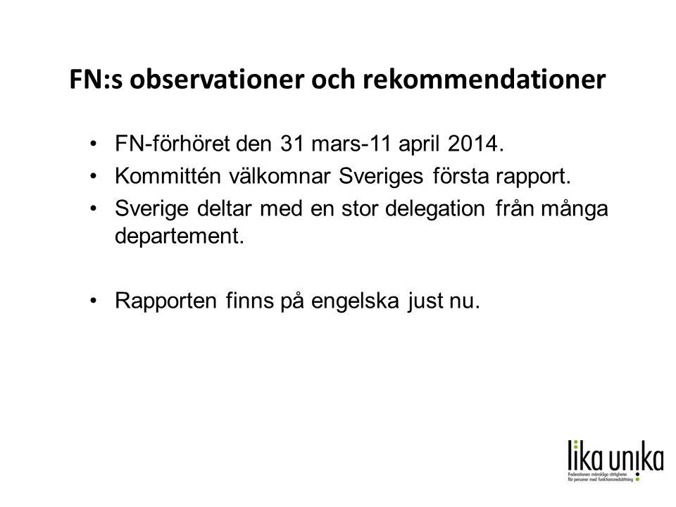 FN:s observationer och rekommendationer