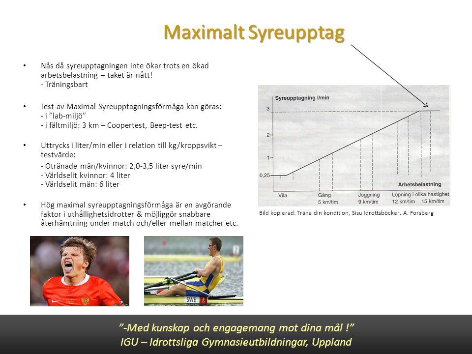 Maximalt Syreupptag -Med kunskap och engagemang mot dina mål !