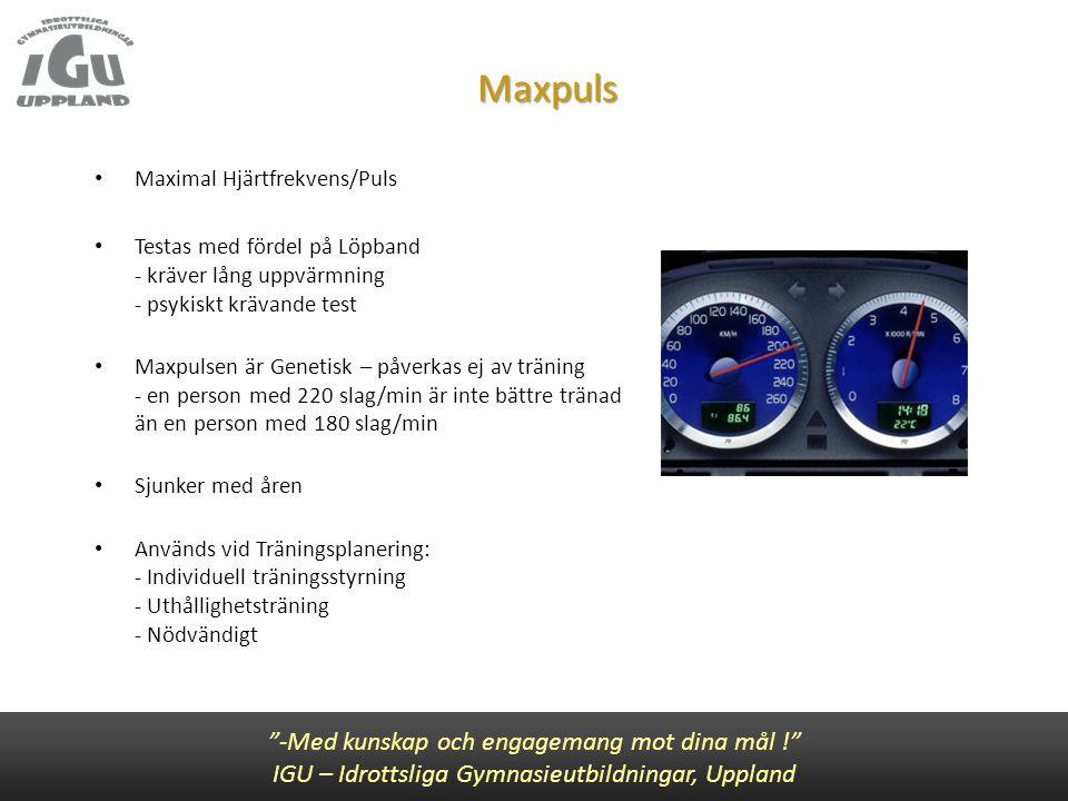 Maxpuls -Med kunskap och engagemang mot dina mål !