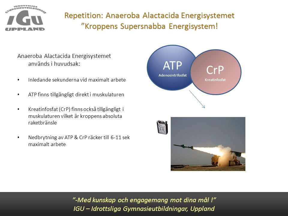 Repetition: Anaeroba Alactacida Energisystemet Kroppens Supersnabba Energisystem!