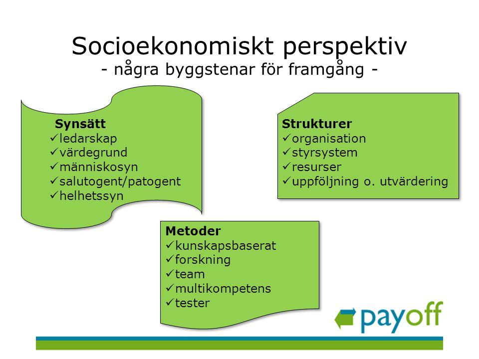 Socioekonomiskt perspektiv