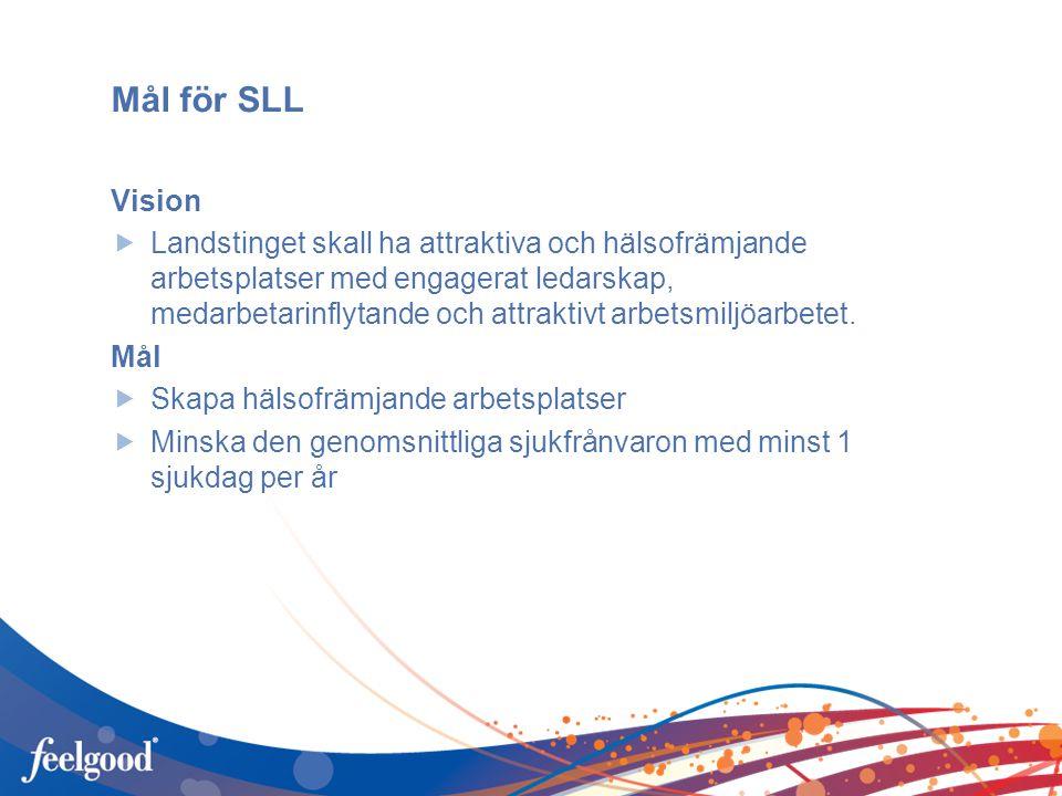 Mål för SLL Vision.