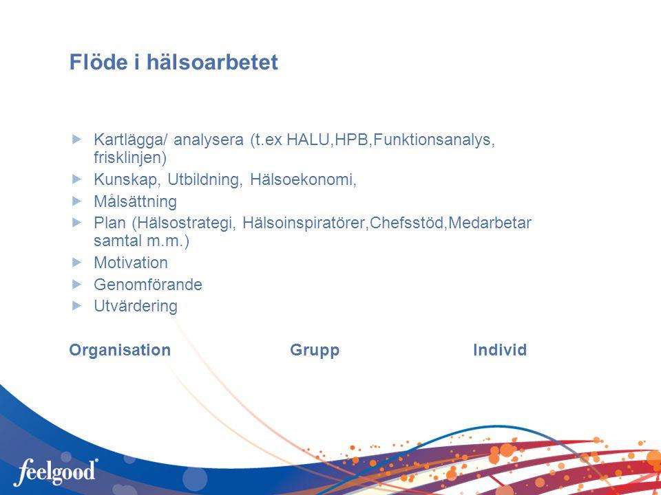 Flöde i hälsoarbetet Kartlägga/ analysera (t.ex HALU,HPB,Funktionsanalys, frisklinjen) Kunskap, Utbildning, Hälsoekonomi,