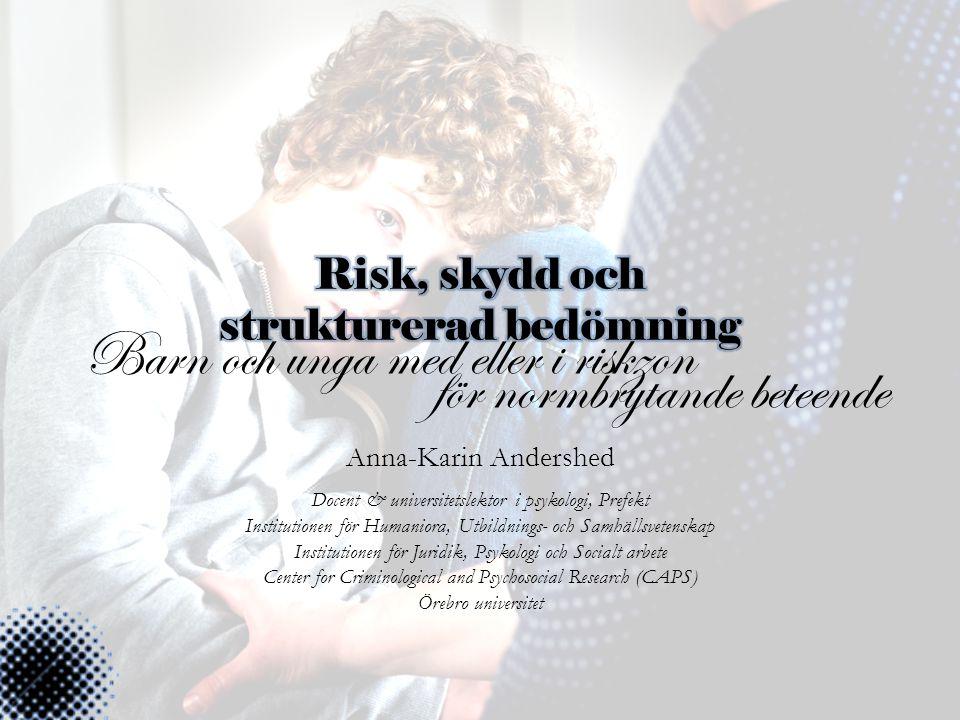 Risk, skydd och strukturerad bedömning