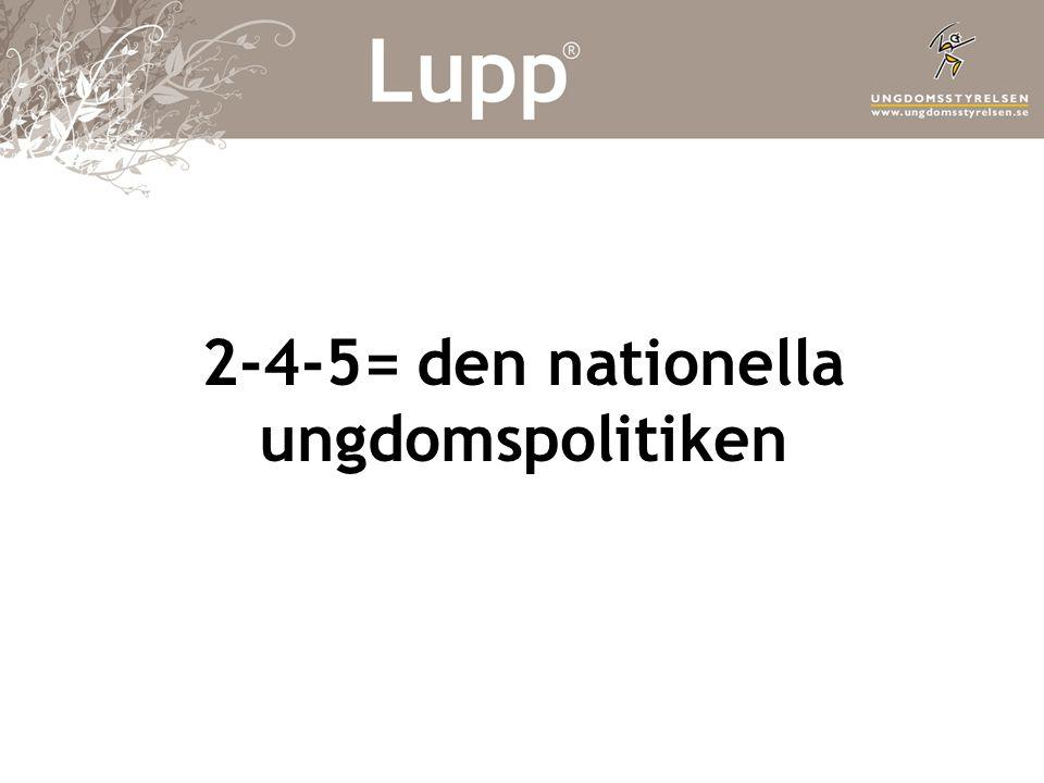 2-4-5= den nationella ungdomspolitiken