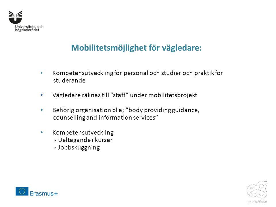 Mobilitetsmöjlighet för vägledare: