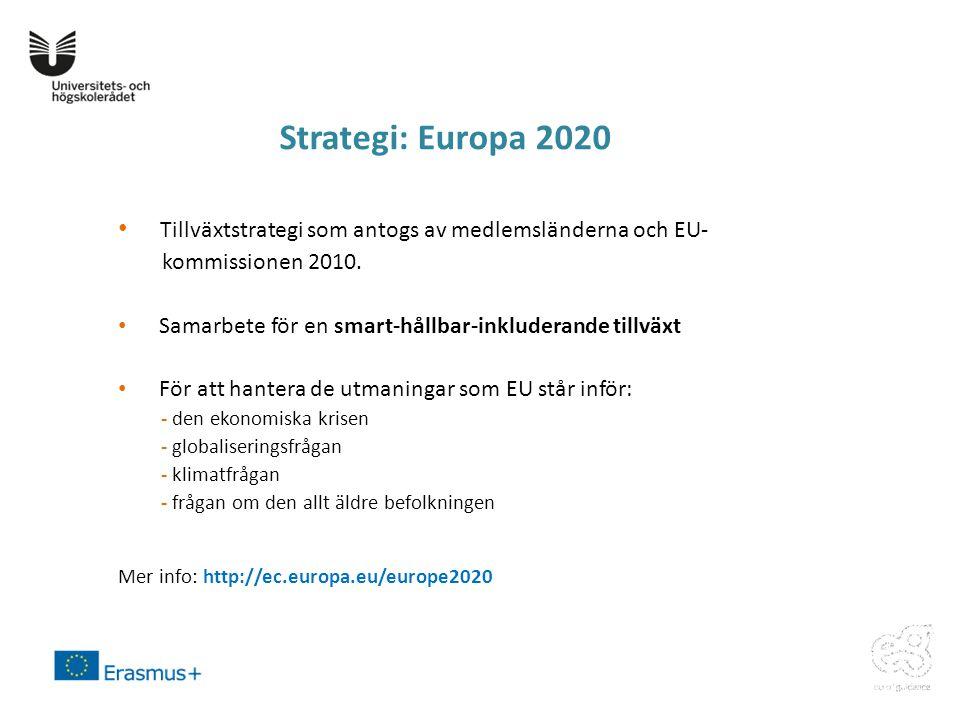 Strategi: Europa 2020 Tillväxtstrategi som antogs av medlemsländerna och EU- kommissionen 2010.