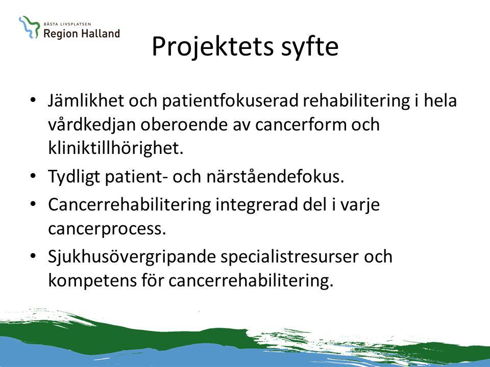 Projektets syfte Jämlikhet och patientfokuserad rehabilitering i hela vårdkedjan oberoende av cancerform och kliniktillhörighet.