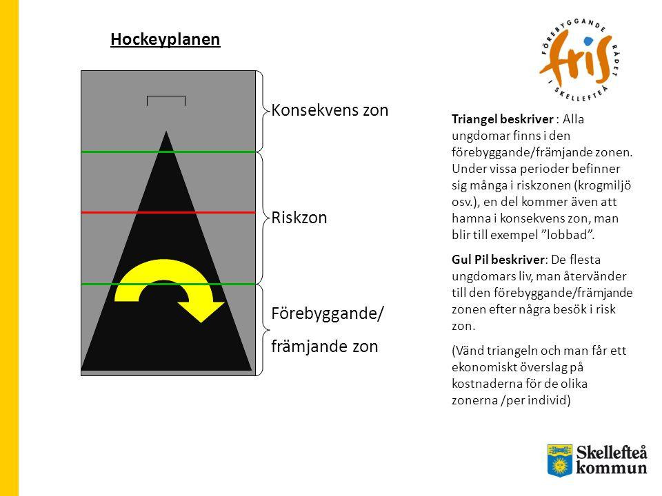 Hockeyplanen Konsekvens zon Riskzon Förebyggande/ främjande zon