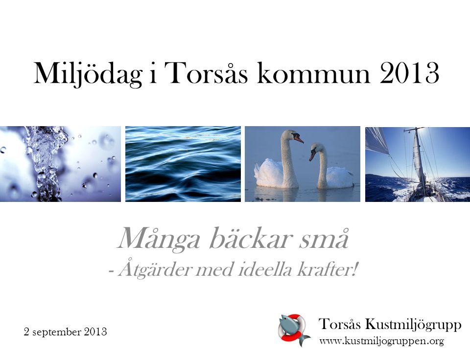 Miljödag i Torsås kommun 2013