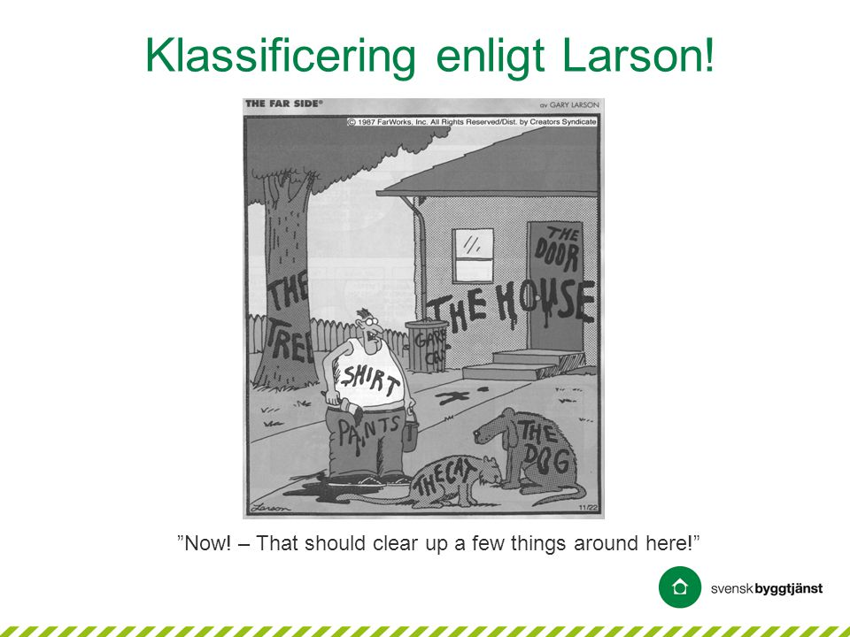 Klassificering enligt Larson!