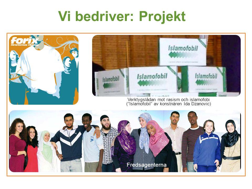 Vi bedriver: Projekt Fredsagenterna