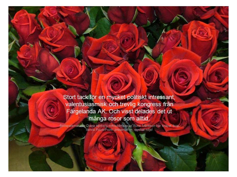 Stort tack för en mycket politiskt intressant, valentusiasmisk och trevlig kongress från Färgelanda AK. Och visst delades det ut många rosor som alltid.