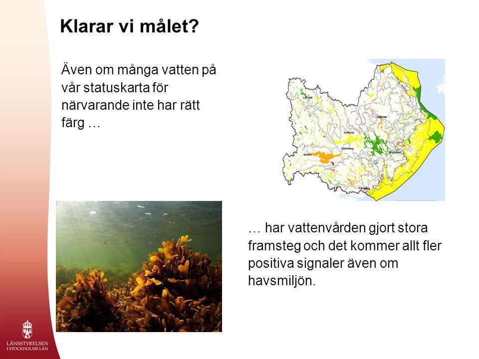 Klarar vi målet Även om många vatten på vår statuskarta för närvarande inte har rätt färg …