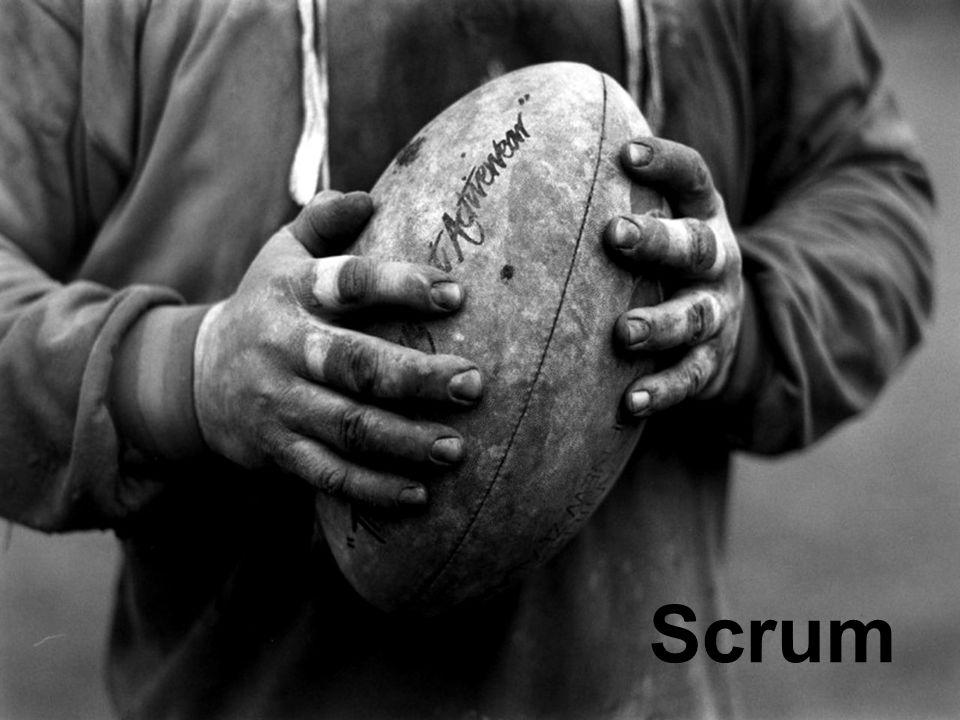 Scrum Scrum