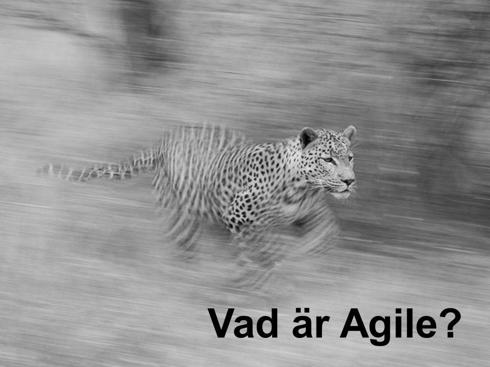 Vad är Agile Vad är Agile