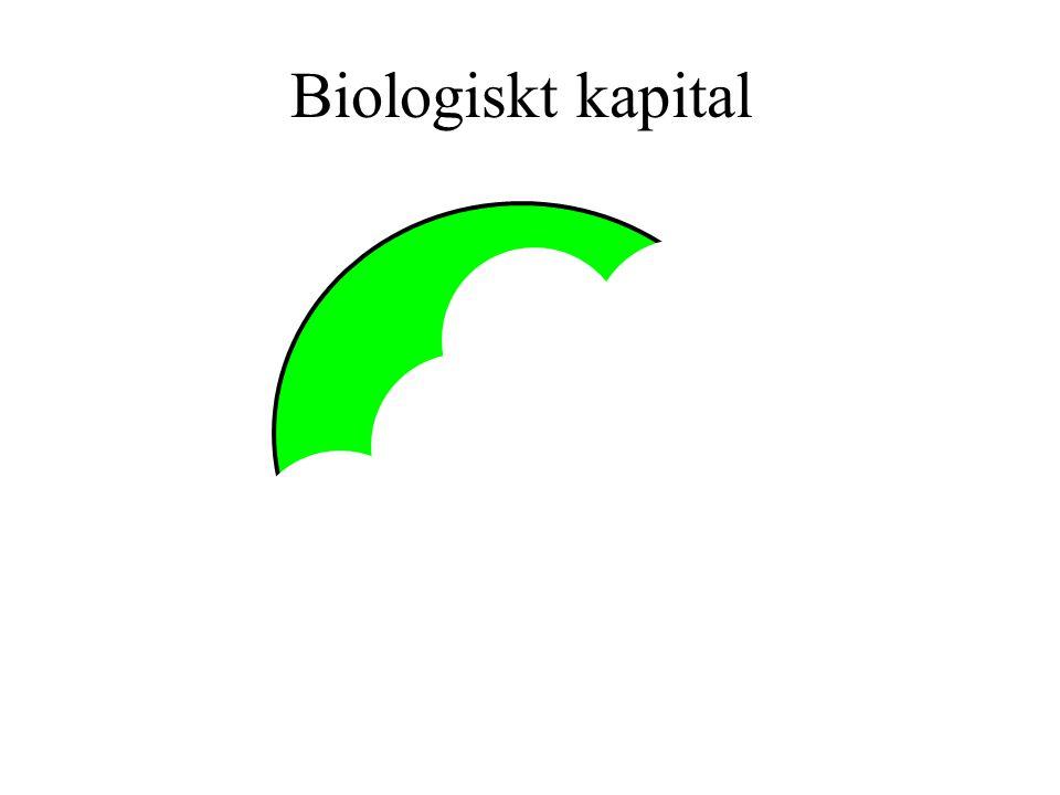 Biologiskt kapital