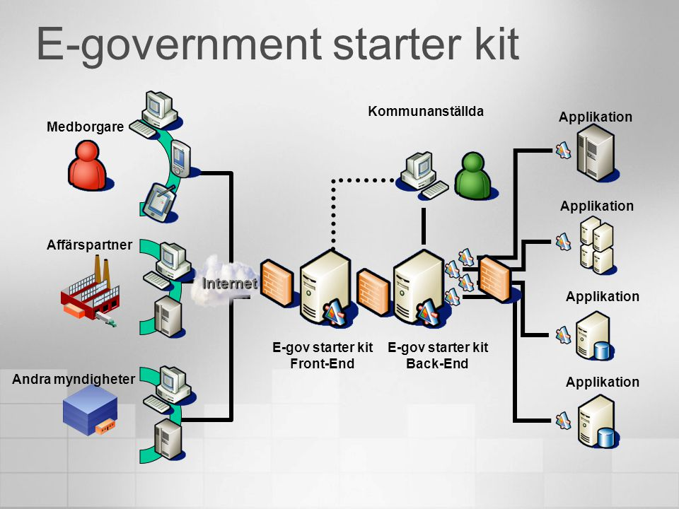 E-government starter kit