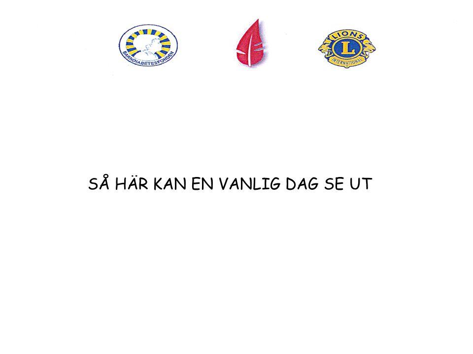 SÅ HÄR KAN EN VANLIG DAG SE UT