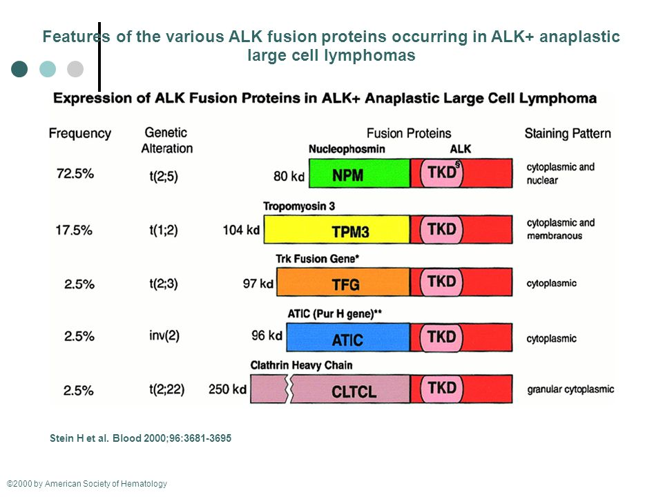 Features of the various ALK fusion proteins occurring in ALK+ anaplastic large cell lymphomas