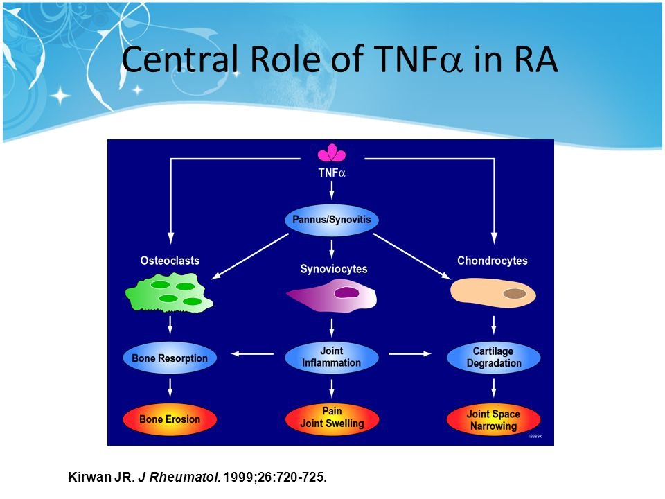 Central Role of TNF in RA