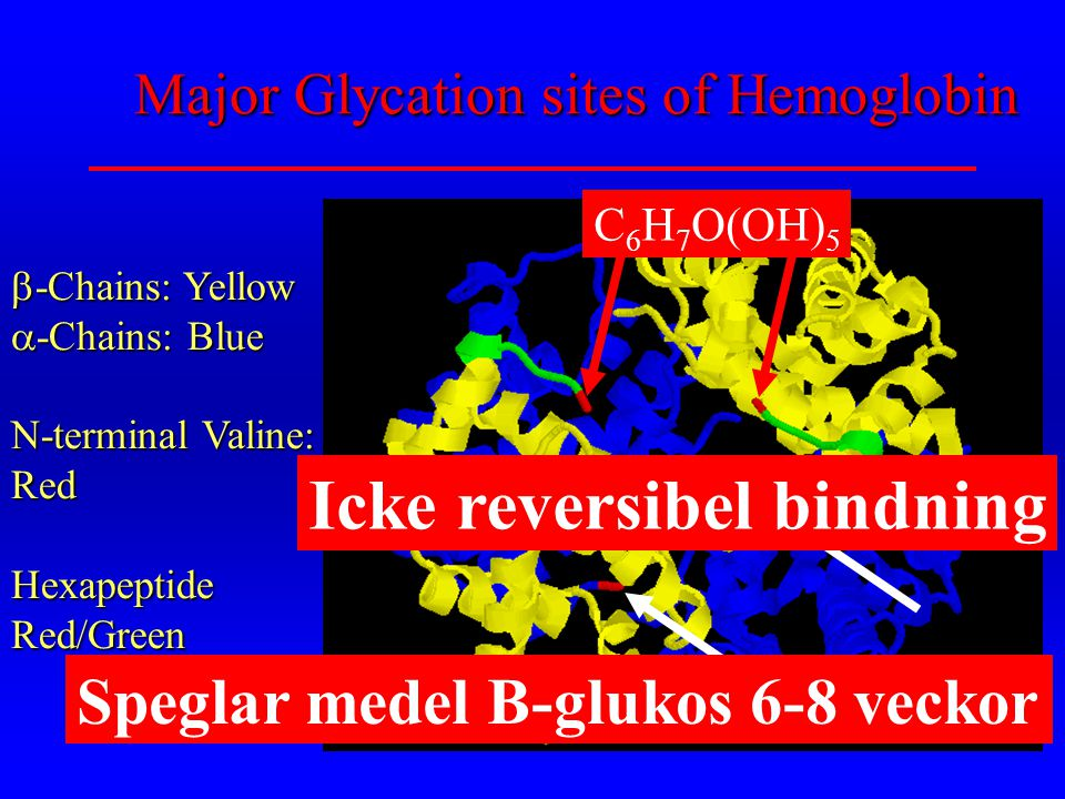 Major Glycation sites of Hemoglobin