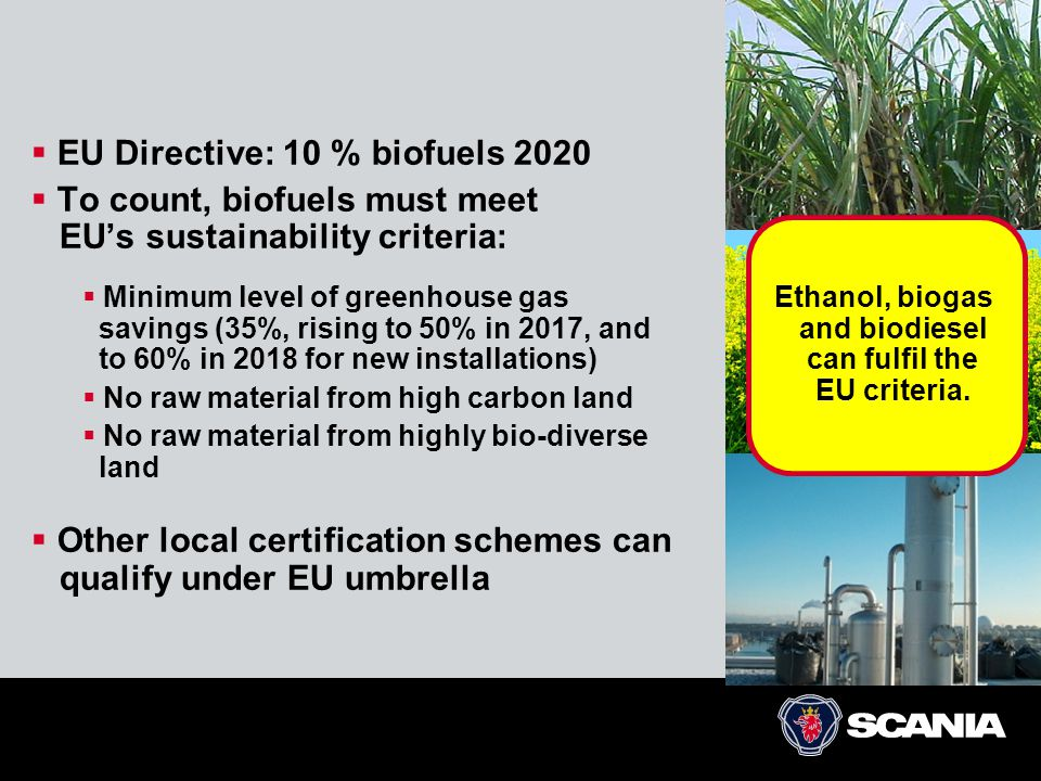 Ethanol, biogas and biodiesel can fulfil the EU criteria.