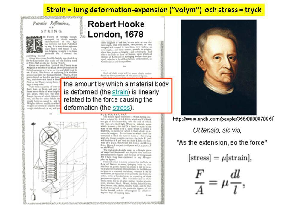 Strain = lung deformation-expansion ( volym ) och stress = tryck