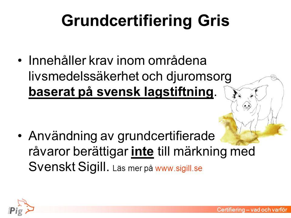 Grundcertifiering Gris