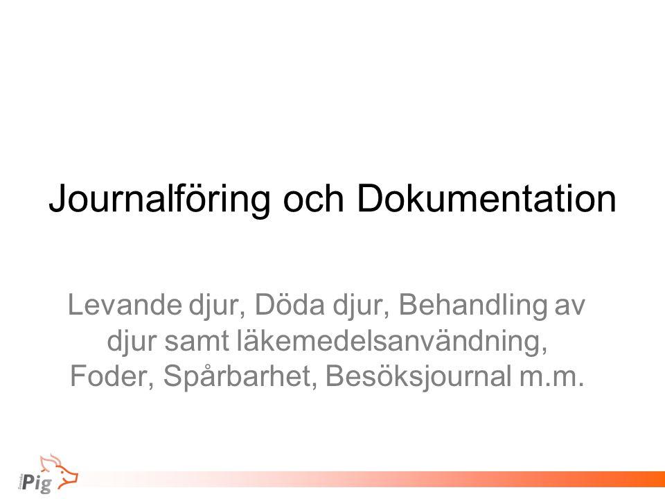 Journalföring och Dokumentation