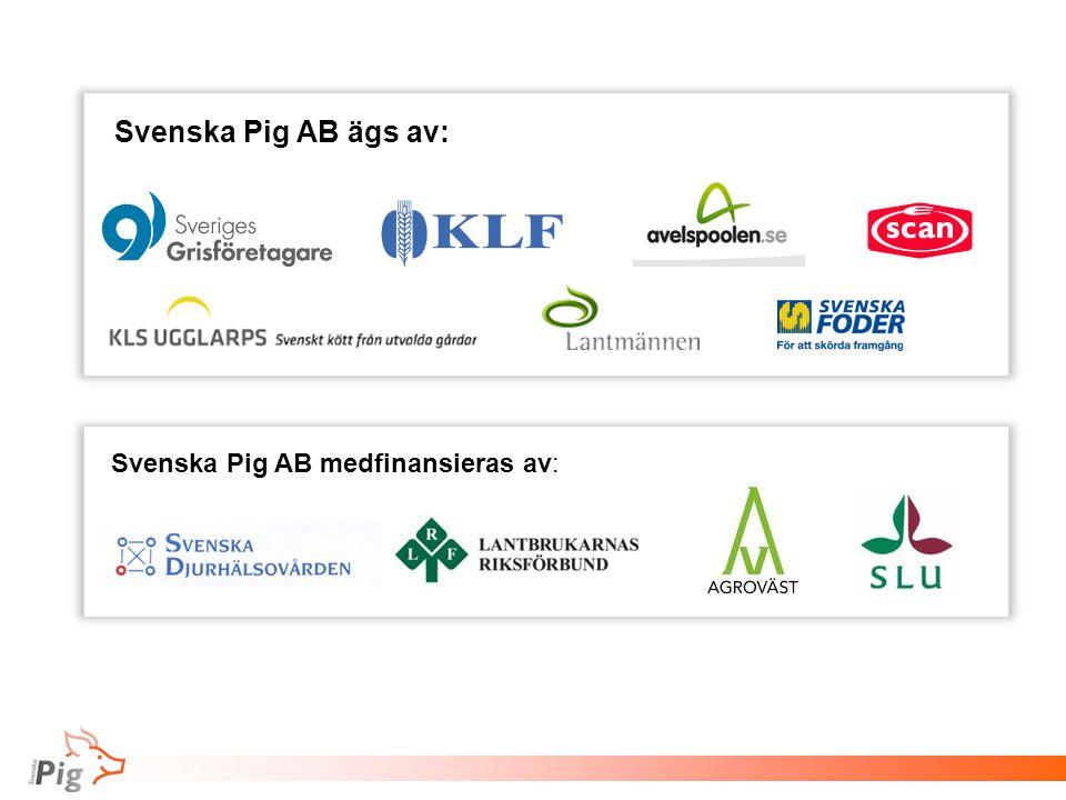 Svenska Pig AB ägs av: Svenska Pig AB medfinansieras av: 66