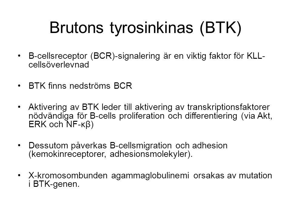 Brutons tyrosinkinas (BTK)